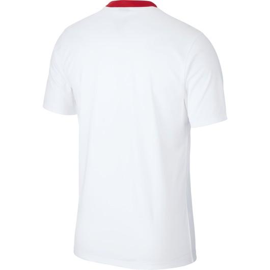Nike Türkiye 2019-2020 İç Saha Erkek Forma