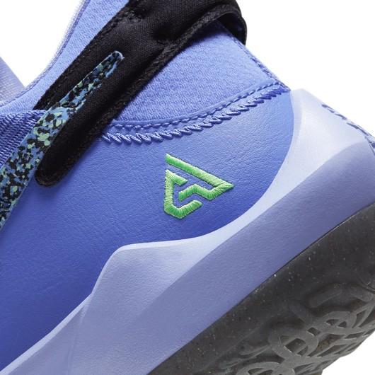 Nike Zoom Freak 2 Erkek Basketbol Ayakkabısı