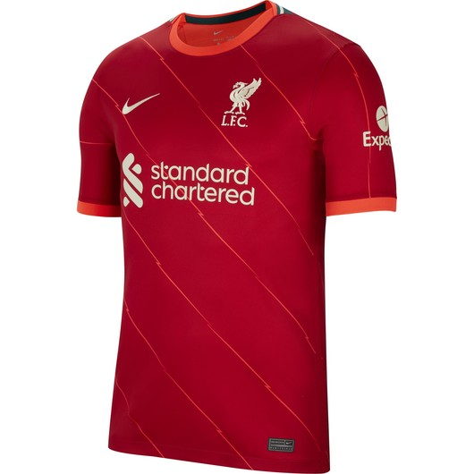 Nike Liverpool FC 2021-2022 Stadyum İç Saha Erkek Forma